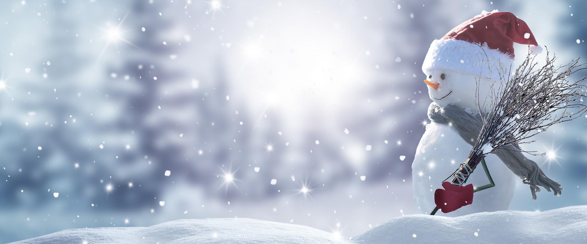 Weihnachtsaktion Triebl
